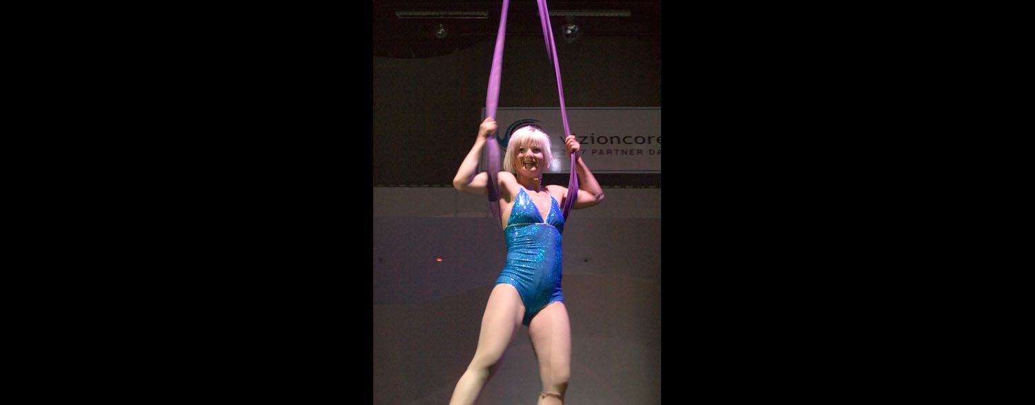 Aerial Act, Vizioncore Corporate Event Corporate event planner in San Francisco 5
